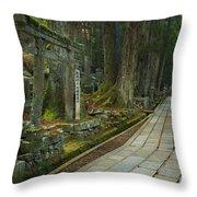 Path Through Koyasan Okunoin Cemetery, Japan Throw Pillow