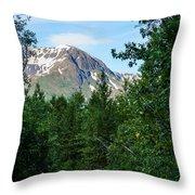 Path Through Nature Throw Pillow