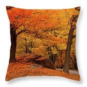 Path Through New England Fall Foliage Throw Pillow