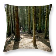 Path Through The Woods. Throw Pillow
