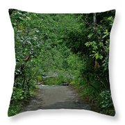 Path To Adventure Throw Pillow