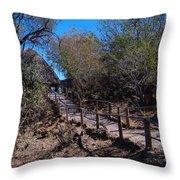 Path To Baobab Lodge Throw Pillow