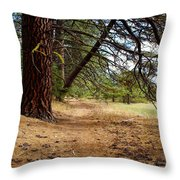 Path To Enlightenment 1 Throw Pillow