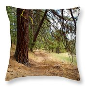 Path To Enlightenment 2 Throw Pillow