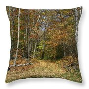 Path To Joiner Brook Throw Pillow