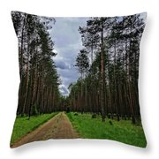 Path To Nowhere Throw Pillow