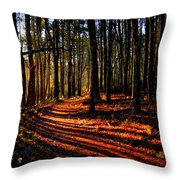 Path To Serenity - Nickerson State Park Throw Pillow