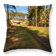 Path To St Cuthbert's Cave Throw Pillow