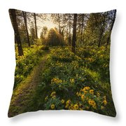 Path To The Golden Light Throw Pillow