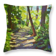 Path To The Lake Throw Pillow