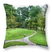 Path To The Mound Throw Pillow
