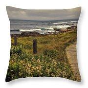 Path To The Sea Throw Pillow