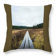 Path To The Unknown Throw Pillow