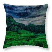 Path To Tipsoo Lake Throw Pillow