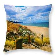 Path To Whiritoa Beach, Coromandel Throw Pillow