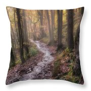 Path Trough The Woods Throw Pillow
