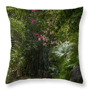 Path With Flowers Throw Pillow