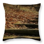 Paths Of The Seasons Throw Pillow