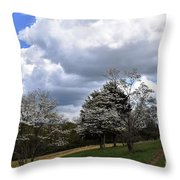Pathway Along The Dogwood Trees Throw Pillow
