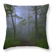 Pathway Through The Fog Throw Pillow
