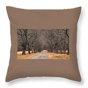 Pathway Through The Trees Throw Pillow