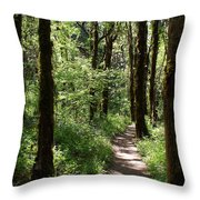 Pathway Through The Woods Throw Pillow
