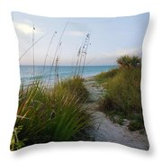 Pathway To Barefoot Beach  In Naples Throw Pillow by Robb Stan