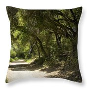 Pathway To Somewhere Throw Pillow