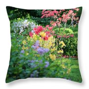 Pathway To Spring Throw Pillow