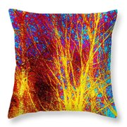 Pathways Of Color Throw Pillow
