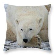 Polar Bear Patience Throw Pillow