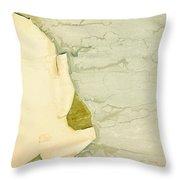 Patina 5 Throw Pillow