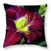Patricia Neal Daylily Throw Pillow