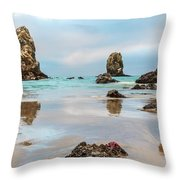 Patrick And Friends Visit Cannon Beach Throw Pillow