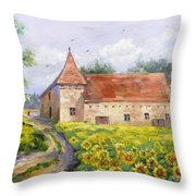 Patricks Barn Throw Pillow
