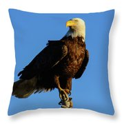 Patriot Guard Throw Pillow