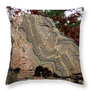 Pattern In A Gneiss Rock Throw Pillow