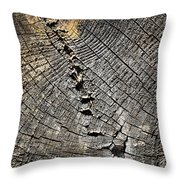 Pattern On An Old Stump Throw Pillow