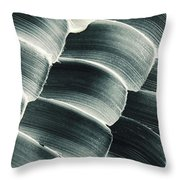 Patterned Ointment On Black Sheet Throw Pillow