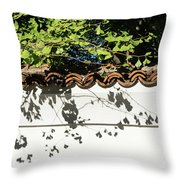 Patterned Sunshine - Ginkgo Shadows On A White Stucco Wall Throw Pillow