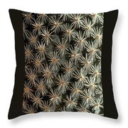 Patterns In Light And Dark Throw Pillow