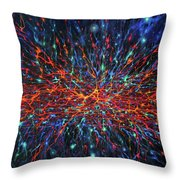 Patterns Of The Universe Throw Pillow