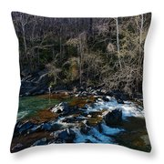 Patuxent River Trout Fisher Throw Pillow