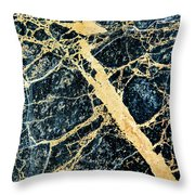 Paul's Marble Throw Pillow