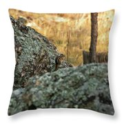 Pause For Dinner Throw Pillow