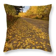 Paved In Gold Throw Pillow