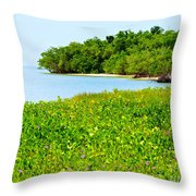 Pavilion Point Throw Pillow
