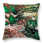 Paw Prints In Green And Red And Yellow Throw Pillow