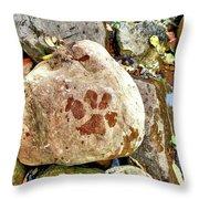 Paws On The Rocks Throw Pillow