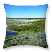 Paynes Prairie View Throw Pillow